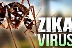控制和避免蚊子有助于最大程度地降低寨卡病毒的风险
